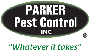 Excellence In Pest Control Management
